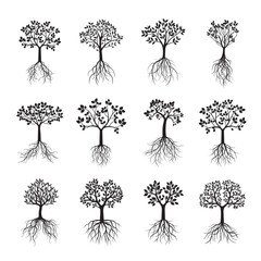 Set Black Trees with Leafs and Roots. Vector Illustration.