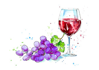 Glass of a red wine and grapes.Picture of a alcoholic drink.Watercolor hand drawn illustration.