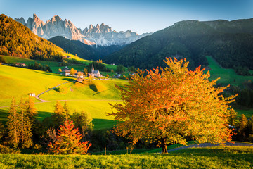 Autumn in the Alps, Funes Valley, Trentino Alto Adige, Italy. Mountain peaks in background.