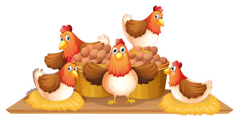 Chickens and eggs in basket