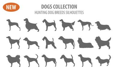 Hunting dog breeds set icon isolated on white . Flat style