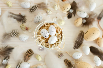 Easter eggs with feather on light wooden background