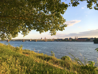 Banks of river Rhine seen from Mainz Kastel, Germany