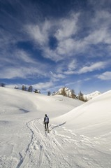 An hiker, alone, in the snow (Devero, Ossola, Piedmont)