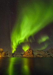Aurora borealis (Polar lights). View to Reinefjorden on Senja island - Lofoten islands, Norway