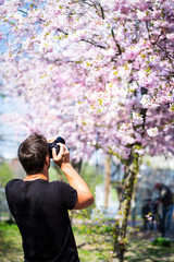 A photographer takes pictures of a cherry blossom