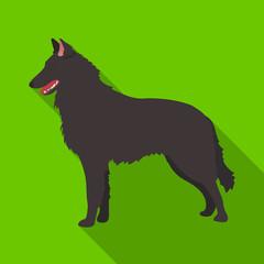 The dark Belgian wolf. Belgium single icon in flat style vector symbol stock illustration.