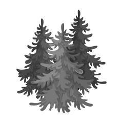Canadian spruce. Canada single icon in monochrome style vector symbol stock illustration web.