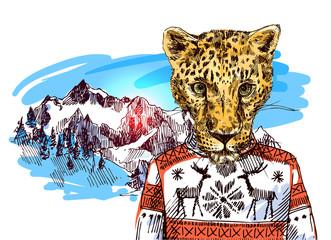Cheetah in mountains.