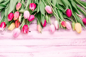 Wood background with spring colorful tulips