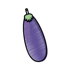 drawing eggplant vegetable nutrition vector illustration eps 10