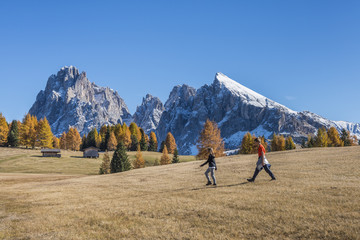 Alpe di Siusi/Seiser Alm, Dolomites, South Tyrol, Italy. Autumn colors on the Alpe di Siusi/Seiser Alm with the Sassolungo/Langkofel and the Sassopiatto/Plattkofel in background
