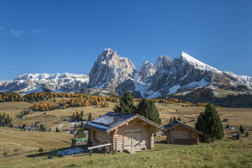Alpe di Siusi/Seiser Alm, Dolomites, South Tyrol, Italy. Autumn colors on the Alpe di Siusi/Seiser Alm with the Sella, Sassolungo/Langkofel and the Sassopiatto/Plattkofel in the background