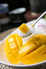 shaved ice with mango, 망고빙수