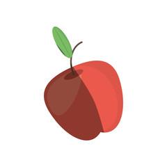 apple fruit fresh shadow vector illustration eps 10
