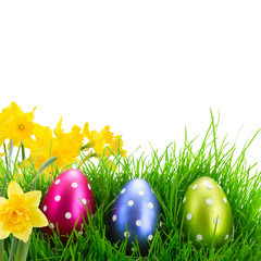 Easter eggs in grass with flowers isolated on white background