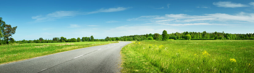 asphalt road panorama in countryside on sunny summer day Wall mural