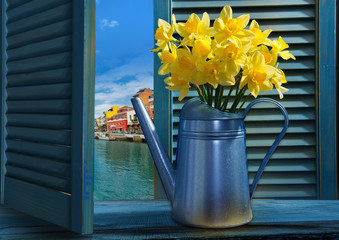 Watering can with daffodils