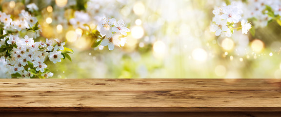 White blossoms in spring with wooden table