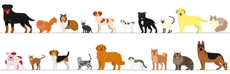 standing dogs and cats border set