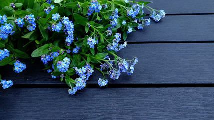 Forget-me-nots symbolic background