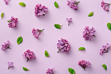 Floral pattern on the purple background. Flat lay flowers. Top view
