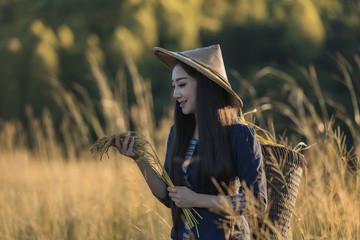 Grow rice