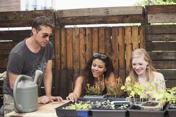 Friends gardening.