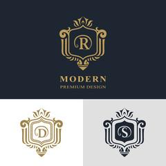 Monogram design elements, graceful template. Calligraphic elegant line art logo design. Letter emblem sign R, D, S for Royalty, business card, Boutique, Hotel, Heraldic, Jewelry. Vector illustration