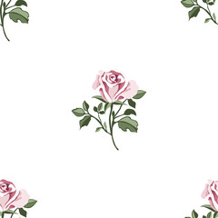 Seamless pattern with colorful roses.Floral vector with pink flower.Textile texture