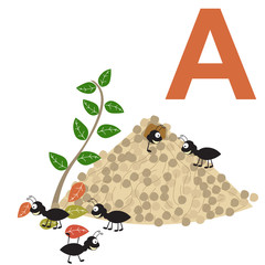 ants kid's alphabet