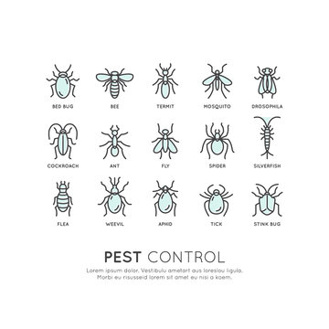 Vector Icon Style Illustration Logo of Pest Control, Food Hygiene, Legislation and Local Authority, Hazard Infection Virus Protection