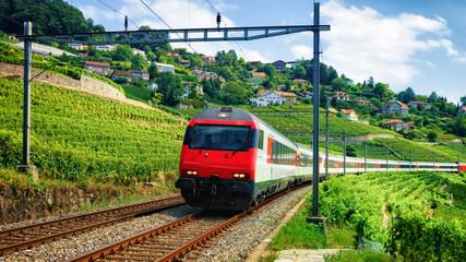 Train and railroad at Lavaux Vineyard Terraces