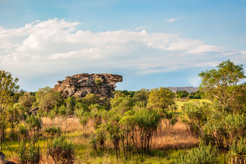 Floodplains in Kakadu National Park Panorama - Northern Territory, Australia..
