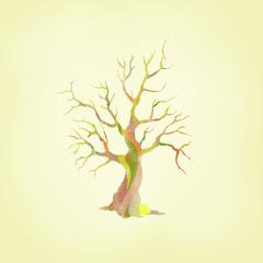 Baum mit besonderer Rinde