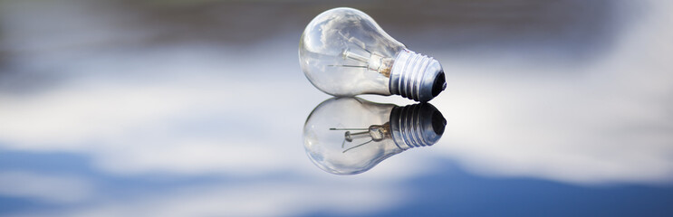 light bulb in nature background