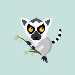 Cute cartoon ring tailed lemur.