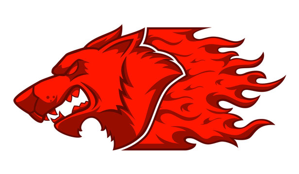 Red Wolf . Image of a red wolf and flame on a white background. vector illustration.