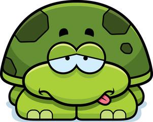 Sick Little Turtle