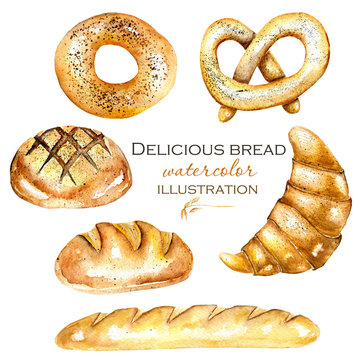 Set, illustration collection with watercolor bakery products (bagel, loaf, French baguette), hand drawn isolated on a white background