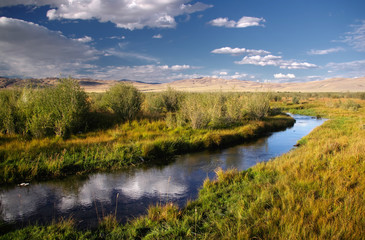 River stream on desert wild mountain plateau with the green yellow dry grass and bush trees at the background of the sunset hills under a blue sky with white clouds,Chuya steppe Altai, Siberia, Russia