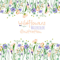 Frame border with wildflowers, eustoma and cornflowers, hand drawn in watercolor on a white background