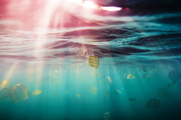 Sun rays in underwater and jellyfish. Ocean pattern in water