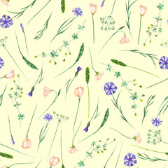 Seamless pattern with wildflowers, eustoma and cornflowers, hand drawn in watercolor on a light yellow background