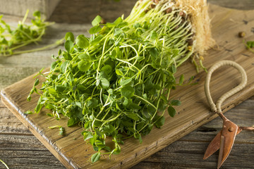 Organic Raw Green Pea Shoots