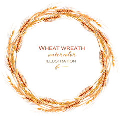 Wreath, circle frame border with wheat spikelets hand drawn in watercolor on a white background