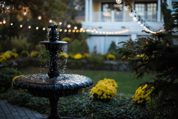 Fountain & Lights