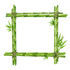 Frame from bamboo stems