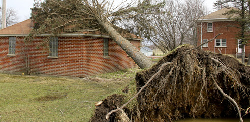 Wind and Tornado puts a tree on a house