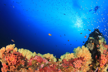 Scuba diver swims over coral reef in ocean